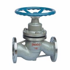 Plunger globe valve