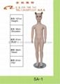 深圳時尚陳列模特道具