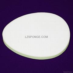 non latex sponge