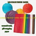 SOILD & DYEING COLOR TISSUE PAEPR