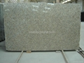 Butterfly Yellow granite slabs,flooring tiles