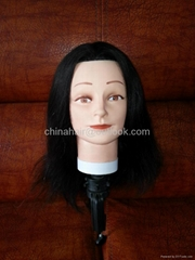 Trainning mannequin head-01