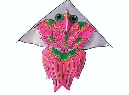 三角形风筝图片; 其他体育用品;; 猫与玻璃钢的金鱼; 图片