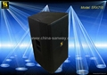 High Efficient Professional Loudspeaker