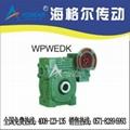 WPWEDK、FCWEDK型双极蜗轮减速机