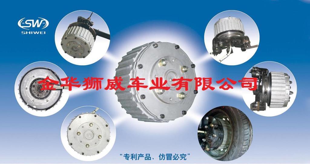 Electric Car Hub Motor