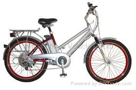 Electric Bike Lithium Battery