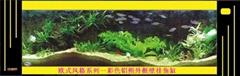 新新水族欧式系列鱼缸