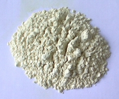 Rice Protein Powder(Grade B)