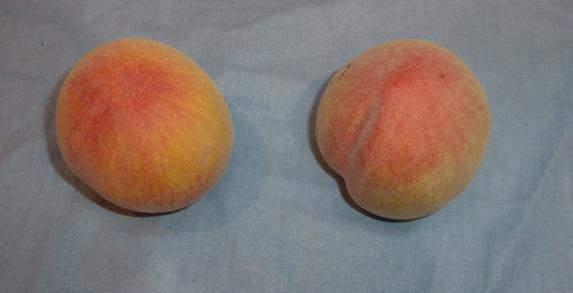 人造水果 3
