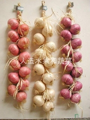 人造大蒜和洋蔥