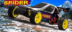 Sell 1/5 Petrol Powered 2 WD Off-road RC Car