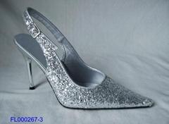 lady's dress shoes