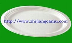 家团圆系列大椭圆盘纸浆餐具