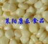 供應速凍鮮糯玉米粒
