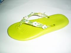 lady slipper