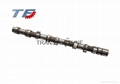 Brand New Camshaft for Peugoet 206