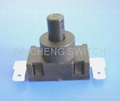 Push Button Switch 2