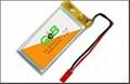 Polymer Li-ion Batteries