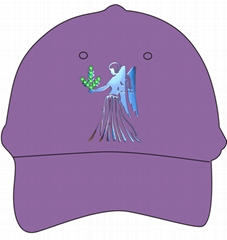 供應星座光纖帽
