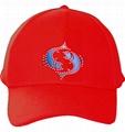 供應星座光纖帽 3