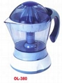Large Capacity Juicer 3