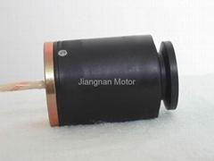 Very Small Alternator, Mini Generator 15-100W