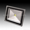 LED floodlight 30w with USA bridge lux chips + MEANWELL ballast (Hot Product - 2*)