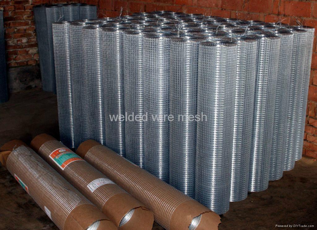 wire cloth 1