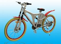 electric bike TDL601Z
