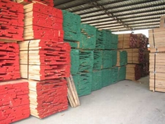 红橡.白橡,硬枫,软枫,白腊,樱桃,沙比利板材等