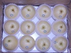Golden Pear Corp 2010