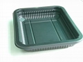 Plastic Paper Disposable Trays/Plates