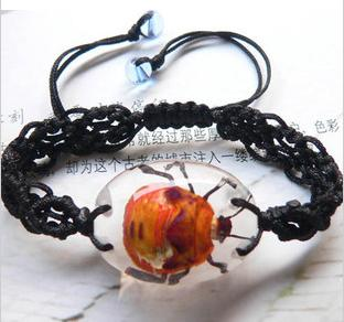 insect bracelet  1