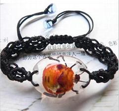 insect bracelet