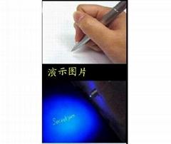 Concealed Pen
