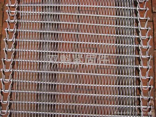 成都熱處理耐腐蝕網帶 5