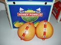 Honey Pomelo 1