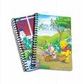 Spiral Notebooks 3