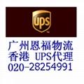 广州DHL国际快递代理 2