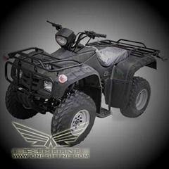 供应250CC ATV