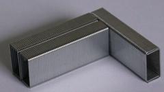 24/61000 Zinc Staple
