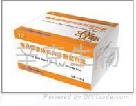 梅毒螺旋體抗體(TP)診斷試劑盒