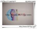 广告扇七折扇塑料扇PP中柄扇礼品O形扇纸扇 4