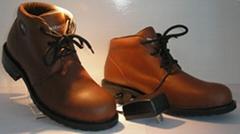 elelctronic shoe