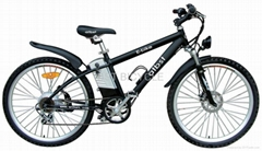 fashion electric bicycle e bike