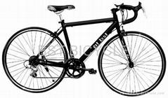 mountain bicycle road racing bike