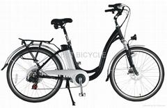 全新电动车电动自行车