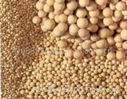 Molecular Sieve (competitive price)