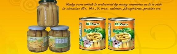 Canned Baby Corn 1
